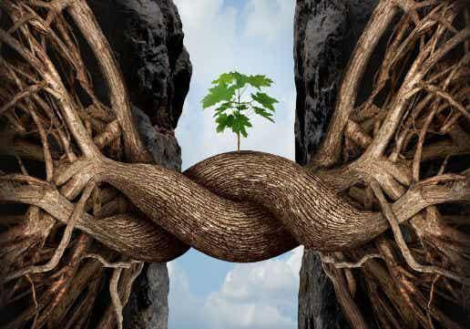 De syv grene: gængse udfordringer, vi alle oplever i livet