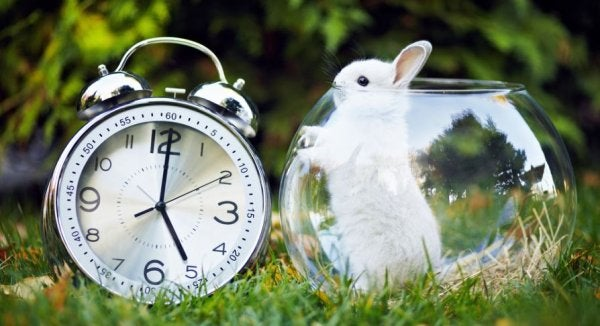 20 produktive ting du kan gøre på blot 5 minutter
