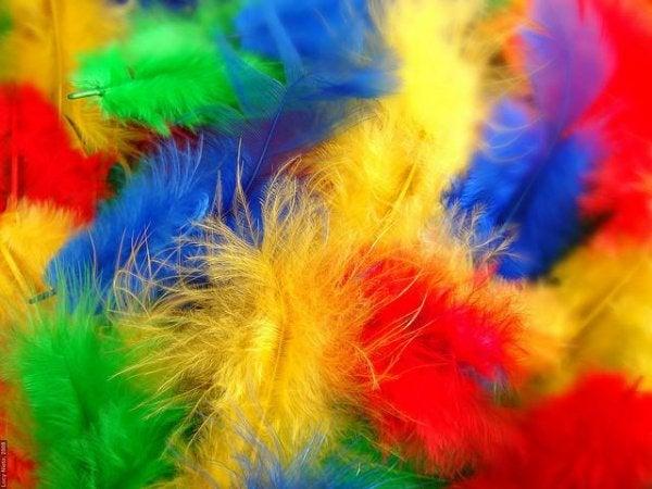 Synæstesi: se lyde, hør farver og smag genstande
