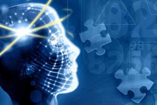 5 interessante måder at forbedre din hukommelse på
