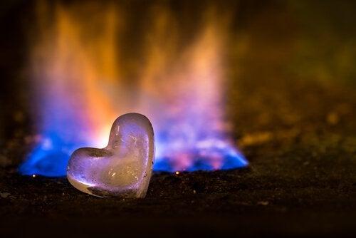 Hvis ilden brænder ud, så led efter en ny flamme