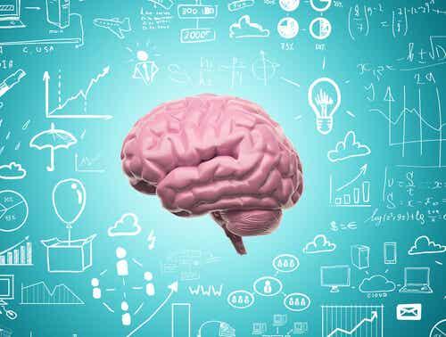 Takket være neuroplasticitet holder vi aldrig op med at lære