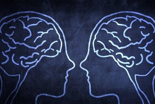 Hvad er spejlneuroner, og hvad gør de?