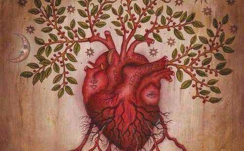 At lære at forstå vores følelser