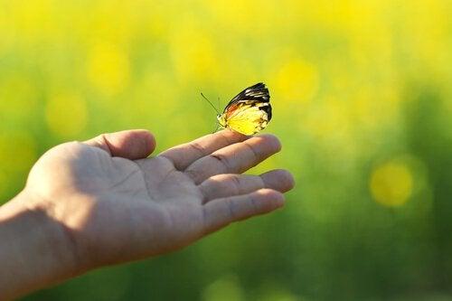 En hånd holder en gul sommerfugl