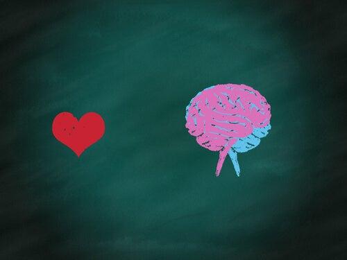 Tegning af hjerte og hjerne
