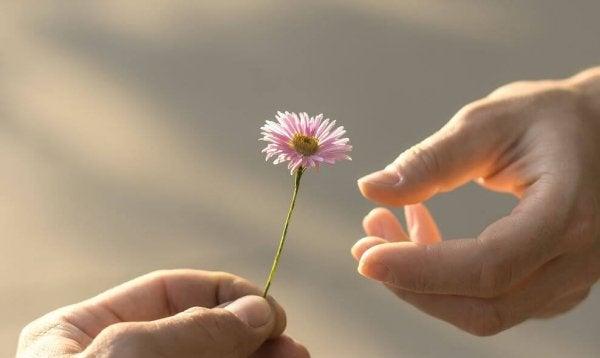 Person giver anden person blomst som eksempel på personer med magi