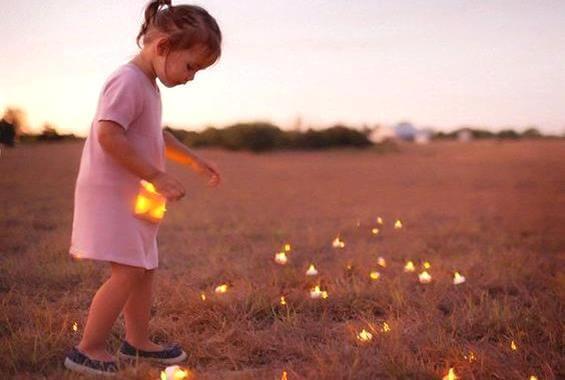 Pige samler lys på en mark