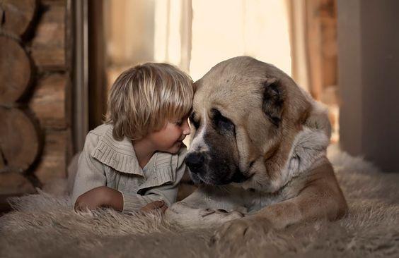 En dreng og en hund viser det tætte bånd mellem børn og dyr