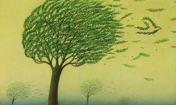 Vinden for blad etil at blæse af et træ
