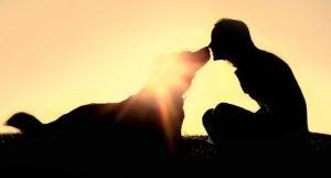 Silhuet af en person, der kysser en hund