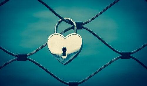 Hjertelås på hegn