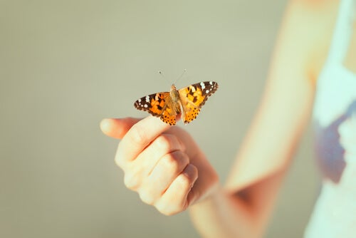 Pige med sommerfugl på hånd