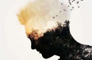 Mands ansigt med landskab og fugle
