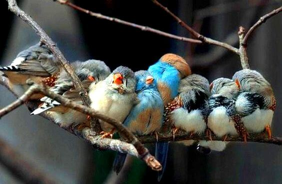 Livet giver dig vidunderlige mennesker, når du fortjener det