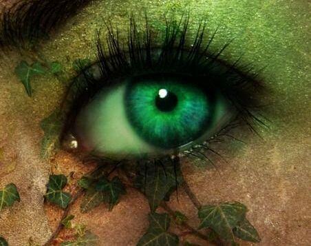 Øje i grønne nuancer
