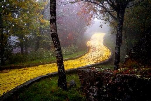 Sti i skov bestående af gule mursten