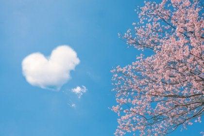 5 kinesiske ordsprog om kærlighed