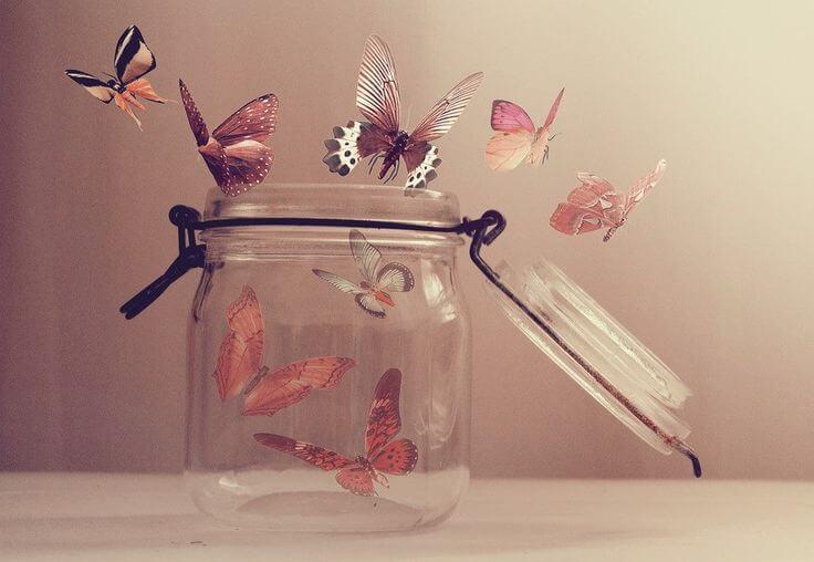 Sommerfugle flyver ud af glas