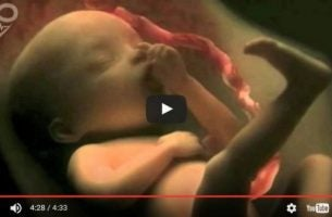 Video om undfangelse