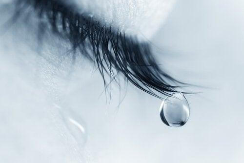 Tåre falder fra øjenvipper på person, der er midt i sorgprocessen