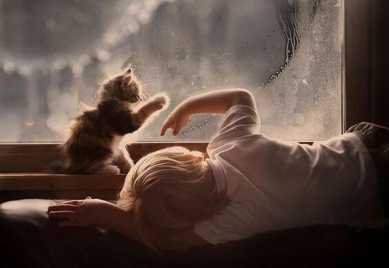 Barn leger med kat foran vindue