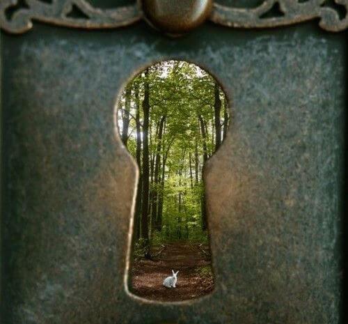 Nøglehul, der fører ud til skov