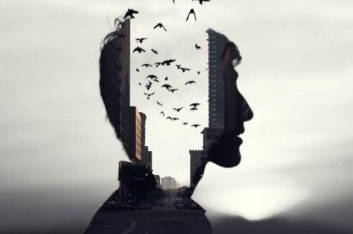 Mands hoved med hul i midten, der er fyldt med fugle