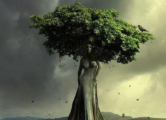 Træ formet som en kvinde
