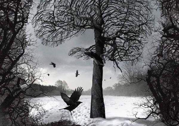 Fugler flyver omkring træ i vinterlandskab
