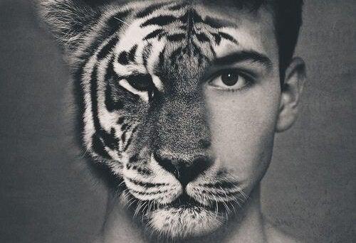 Mands ansigt med halvdelen af ansigtet som en tiger