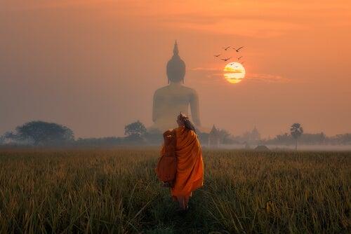 Den forgiftede pil: buddhistisk fortælling om at leve i nuet