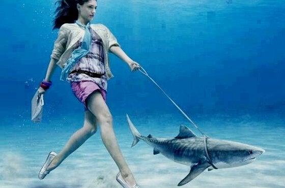 Kvinde går tur med haj uden skyldfølelse