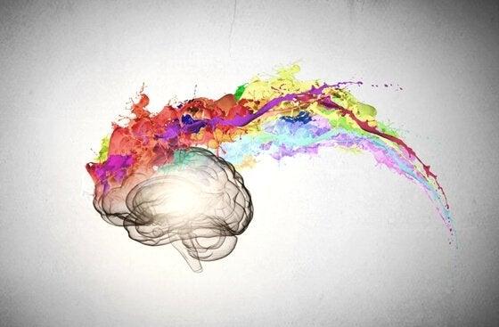 Hjene med farverigt maling viser følelsesmæssig intelligens
