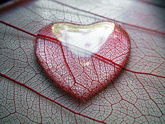 Hjerte formet af glas