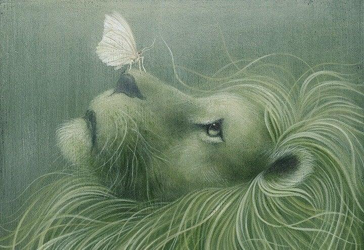 Sommerfugl sidder på løves snude