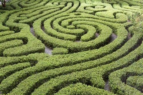 Labyrint symboliserer forvirrende overbevisninger