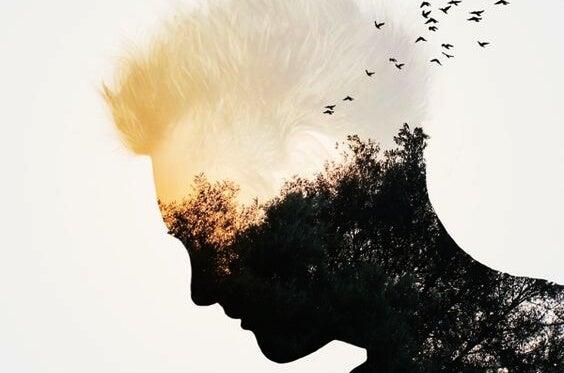 Silhuet af mands hoved med fugle