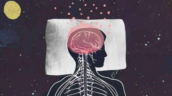 Melatonin fremmer søvn og ungdommelighed