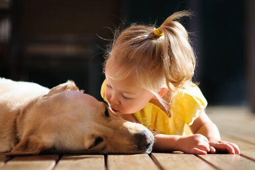 Et venligt barn kysser en hund