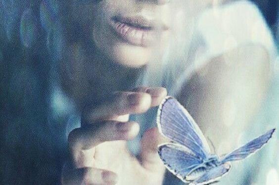 Person rører ved sommerfugl