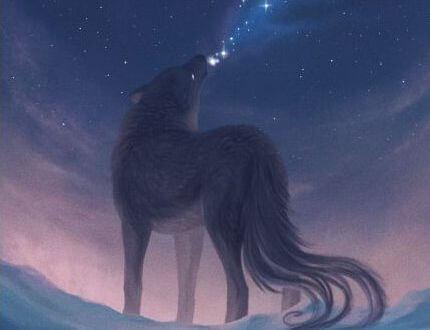 Ulv hyler i natten mod stjernehimmel