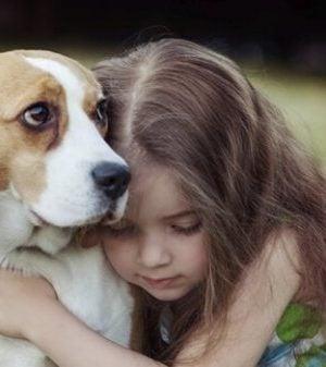 Pige med hund illustrerer empati fra en hund