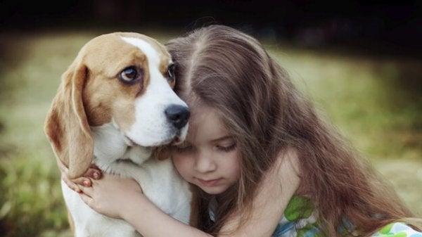 Den helende kraft i empati fra en hund