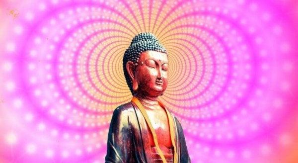 Buddha statue på pink baggrund