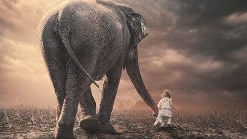 Barn går med kæmpe elefant