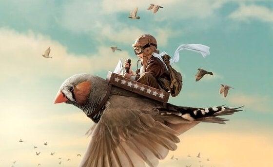Dreng flyver på fugl som eksempel på succesfulde mennesker