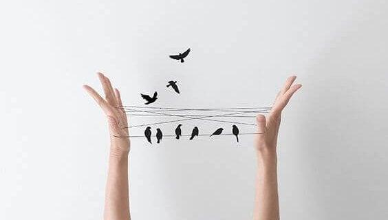 Fugle sidder på snore mellem hænder