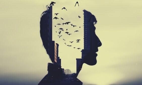 Mand med mellemrum i hovedet med plads til fugle