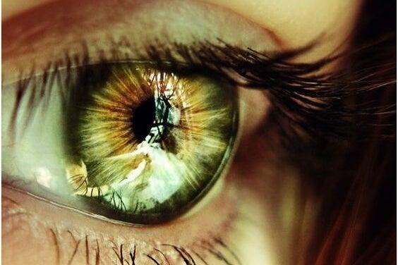Grønt øje afspejler en sjette sans
